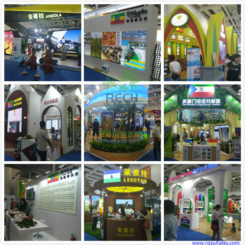 China-Africa-Economic-and-Trade-Expo2_副本